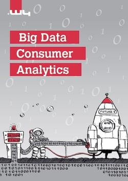 Big Data Consumer Analytics