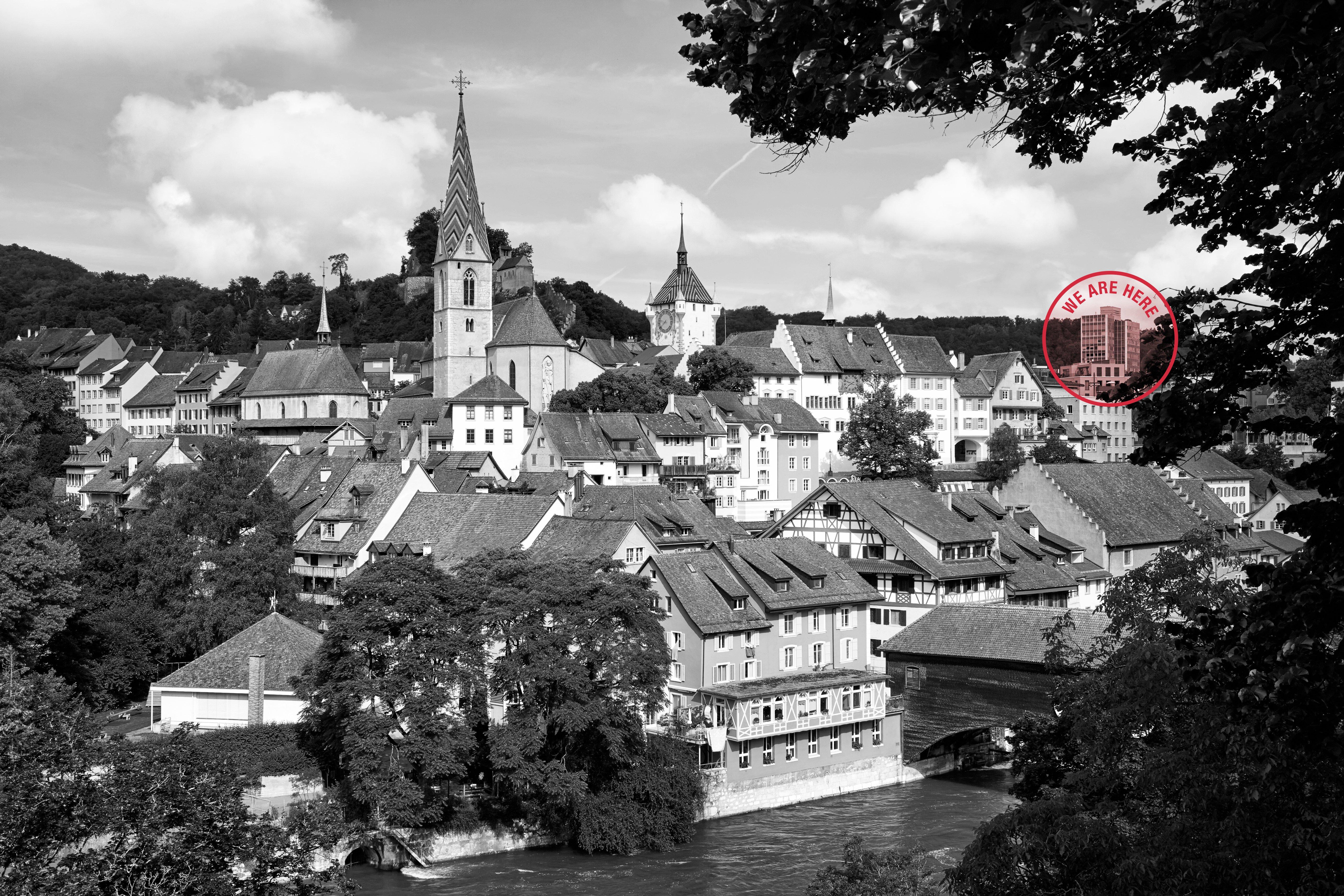 Baden_Panorama_AdobeStock_113969714_sw_hell