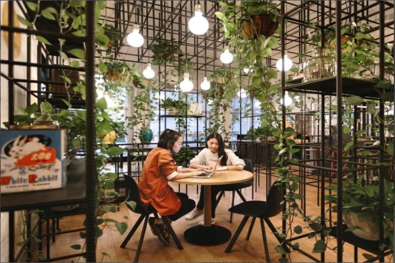 W4 Office Shanghai