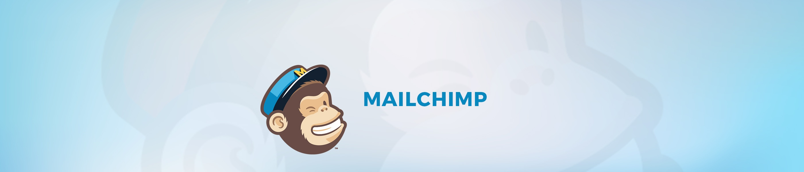180108_Mailchimp.jpg