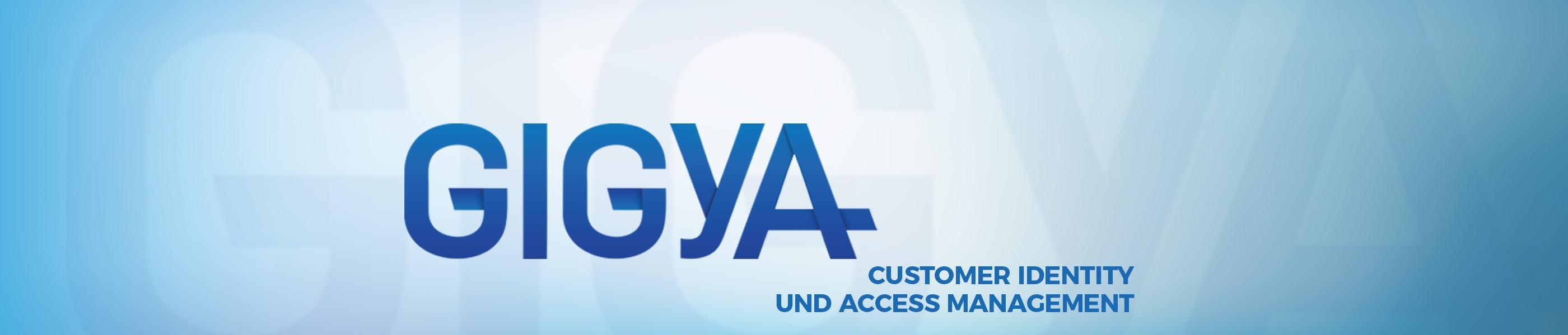 180108_Produkte_gigya_DE.jpg